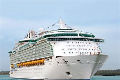 Independence Of The Seas Kabinen - Cruise Gallery