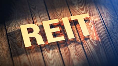 What Are the Pros and Cons of Owning an Equity REIT vs