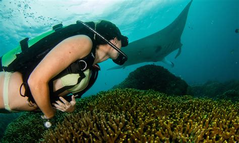 Scuba Diving: A Girl's Guide to the Underwater World