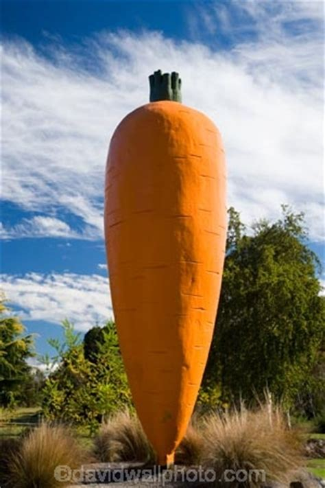 Giant Carrot Statue, Ohakune, Central Plateau, North